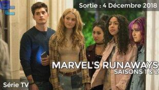 Marvel's Runaways, Saisons 1 & 2