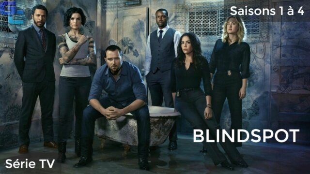 Blindspot, Saisons 1 à 4