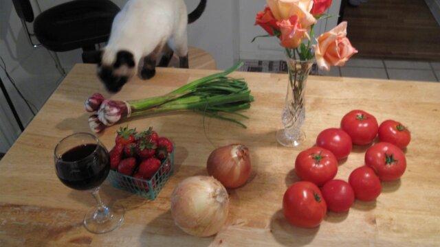 Fruits et légumes toxiques pour les chats
