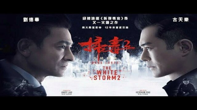 Main photo The White Storm 2 : Drug Lords